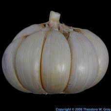 Sulfur Garlic