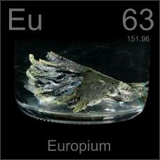 Europium Dendritic sample under oil