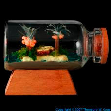 Carbon Island In A Bottle